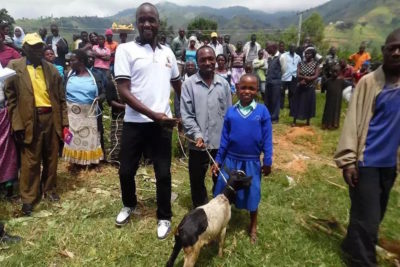 How goats are helping to keep girls at school in a Ugandan village