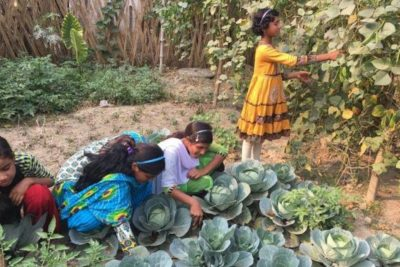 How growing vegetables is helping to keep Indian girls in school