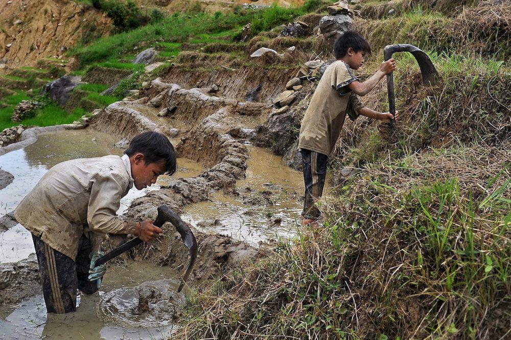 Child labour ✎ Theirworld