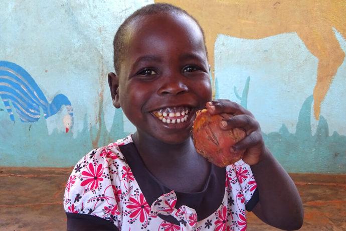 Sweet potato project gives vital vitamin boost to preschool children in Malawi
