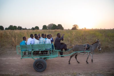'Donkey school buses' take young children to their classes