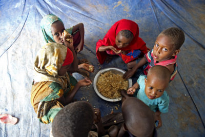 Global hunger crisis is affecting children's growth and success at school