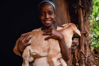 Parents forced to use goats and labour to pay school fees in Zimbabwe